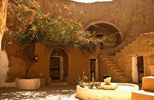 Meet me in Sahara's paradise