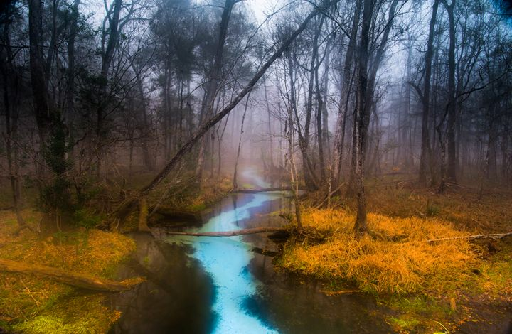 Naked Spring Run I - Photography by Michael Riffle
