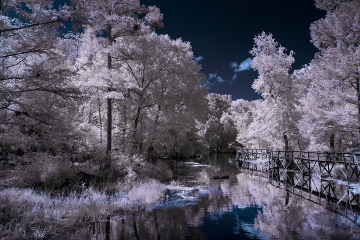 Blue - Photography by Michael Riffle