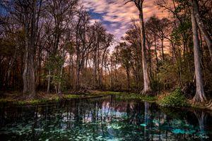 Naked Springs After Dark
