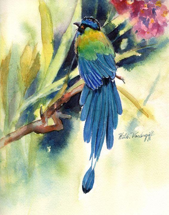 Bird of Paradise - Hilda Vandergriff