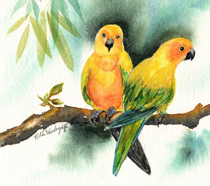 Parrots - Hilda Vandergriff