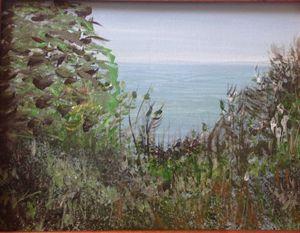 Sea Bluff