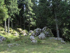 Calcareous stones
