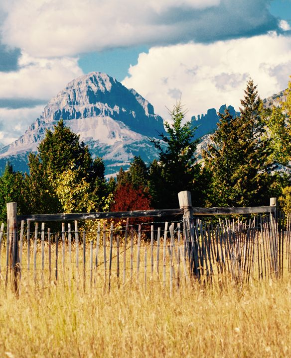 Crowsnest Mountain in Fall - Fledgling Creations