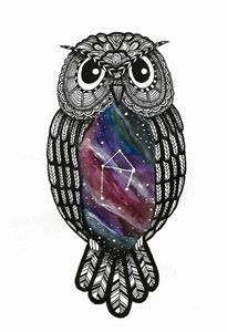 Owlibra