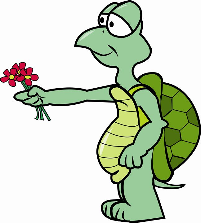 Turtle with flower - Dave's Cartoons