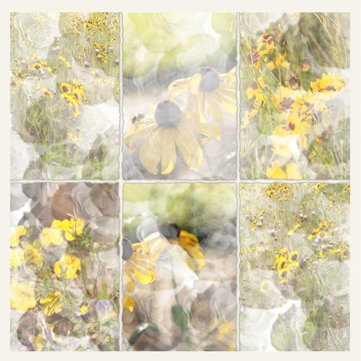 Le Juane (The Yellow) - Nan Mac