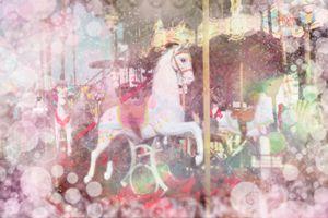 The Fair. Pony #12