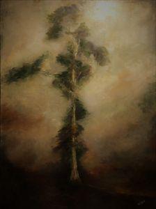 Eucalptus Portrait - Terry Orletsky