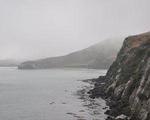 Misty Shore of New Zealand