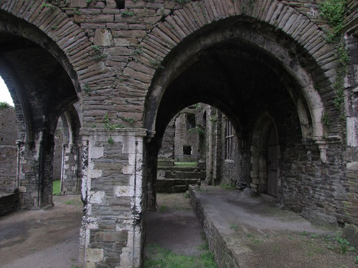 Neath Abbey - Tahlia paige