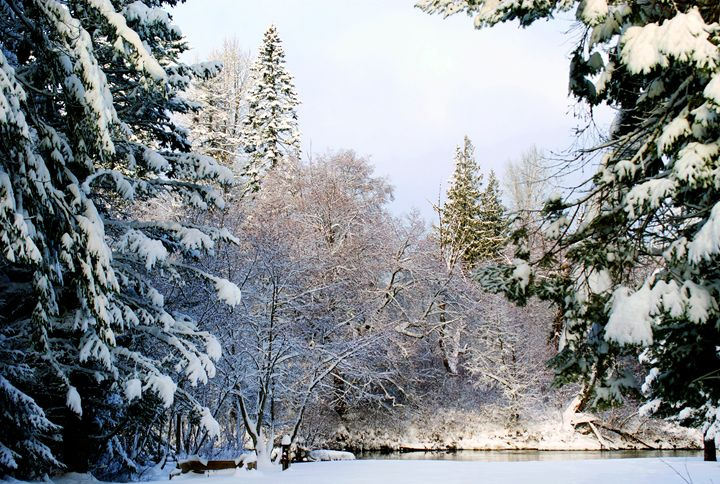 White Christmas - David Russell Photography