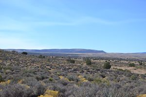 Hill of Arizona