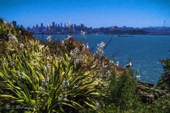 Island View, Alcatraz, San Fran. Bay - Saco River Art & Photography