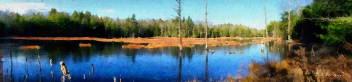 A Marsh in Late Autumn - Saco River Art & Photography