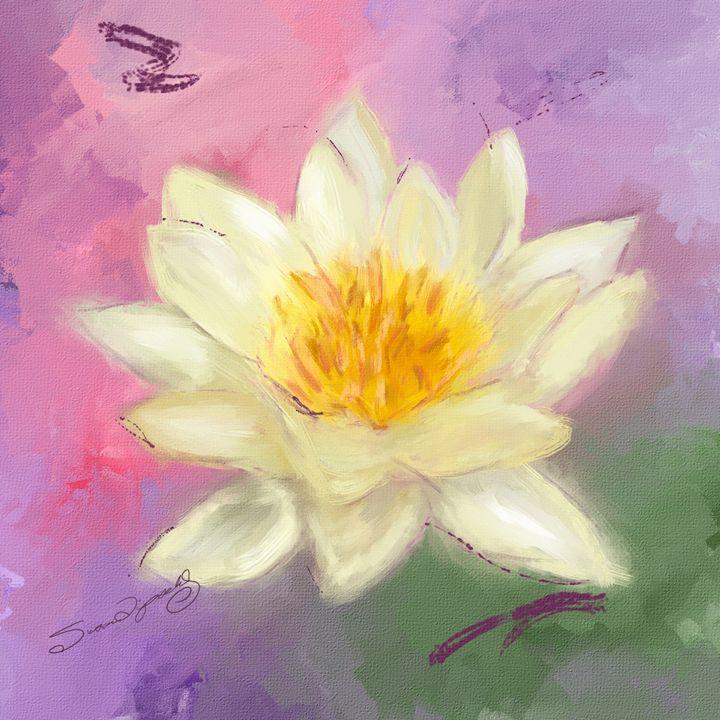 LOTUS FLOWER - SHAYNA PHOTOGRAPHY