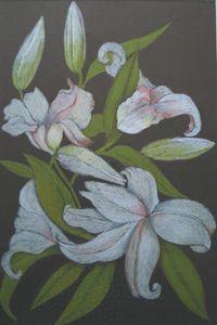 lilies - natalija's gallery