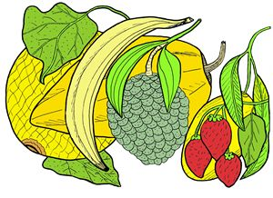 Mixed Fruit - Ivos Art
