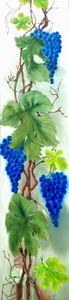 Blue Grape.