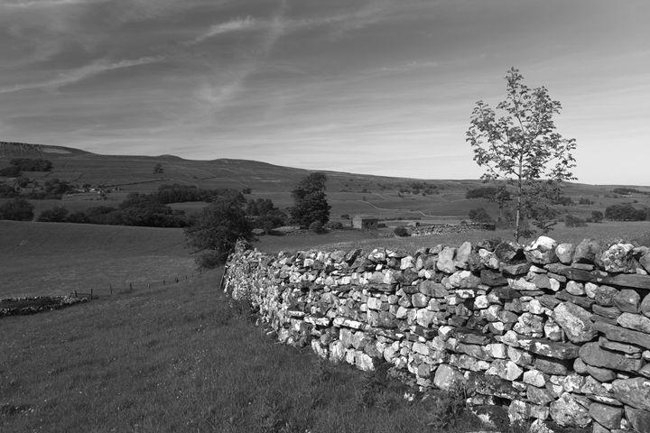 Summer, West Witton Moor - Dave Porter Landscape Photography