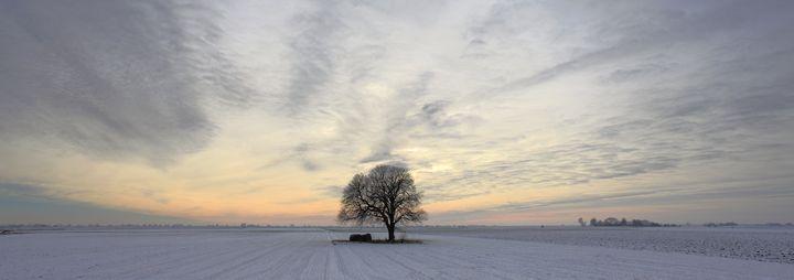 Hoare frost winter scene - Dave Porter Landscape Photography