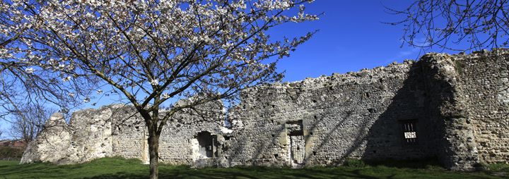 St Pancras Priory, Lewes town - Dave Porter Landscape Photography