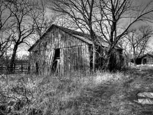 Cold Abandonment - Lion's Gate and Open Road Photography