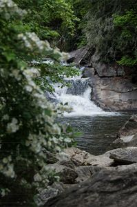 Dogwood Falls