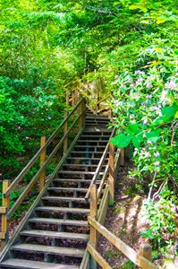 Stairs to Mother Nature