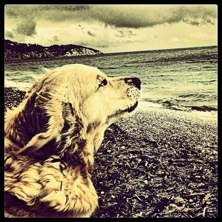 On the beach - gluca