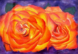 Pastel Orange Roses