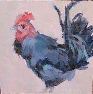 Black Rooster