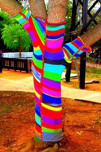 Sock Tree in Old Poway Park