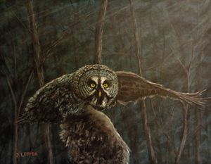Twilight: Owl of Ga' Hoole